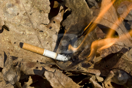 how to get cigarette burns out of carpet